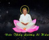 CON THÚ TU-CÂY VỀ TRỜI-ĐÁ MÒN-Lời giảng Đức Thầy Lương Sĩ Hằng